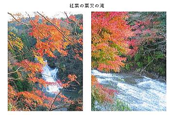 養老渓谷 紅葉の時期